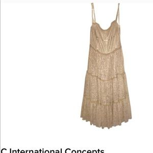 INC SILK LACE DRESS